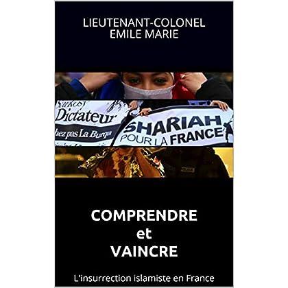Comprendre et vaincre: L'insurrection islamiste en France