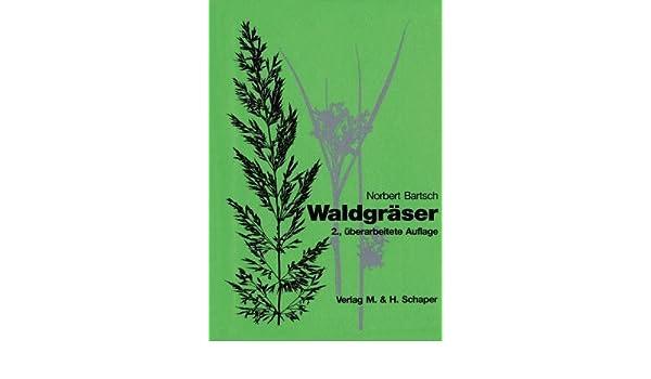 Waldgräser: Süßgräser - Riedgrasgewächse - Binsengewächse: Amazon.de ...