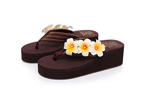 pengweiPendenza semplice con la parola pantofole spesse sottili pantofole scarpe da spiaggia delle signore pistoni 6