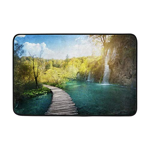 LINGVYTE Nature Waterfall Lake Forest Scenery Doormats Floor Mats Shoe Scraper for Home Indoor Entrance Way Front Door 23.6 by 15.7 Inches 40 x 60 cm (Forest Service Hose)
