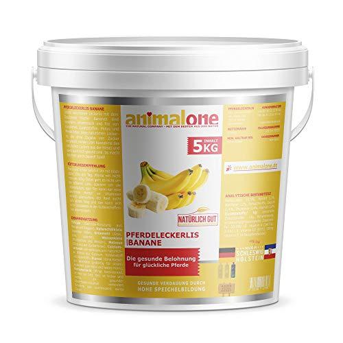 animalone - PFERDELECKERLIS Banane 5 KG Eimer - das gesunde Leckerli für Ponys und Pferde