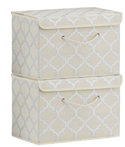SILVER SWAN Premium Aufbewahrungsbox für Kleidung-Accessoires-Schlafzimmer-Büro-Handwerk 2er Pack