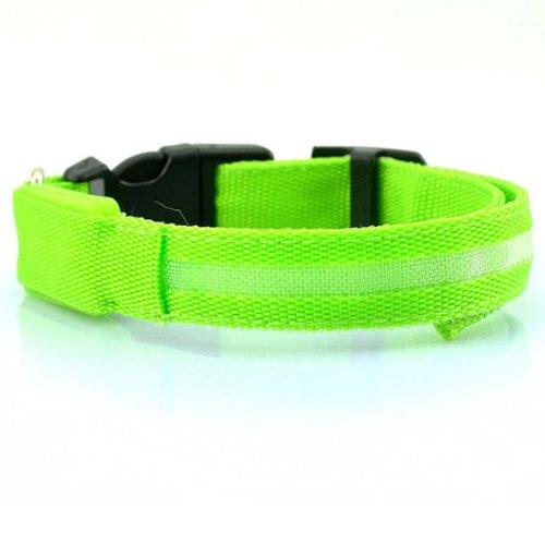Sicherheitshalsband für Hunde, mit blinkenden LED-Lichtern. Leuchtendstarkes blinkendes Sicherheitshalsband für den Hund.