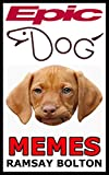 Epic Dog Memes: The Woofest Dog Memes Ever