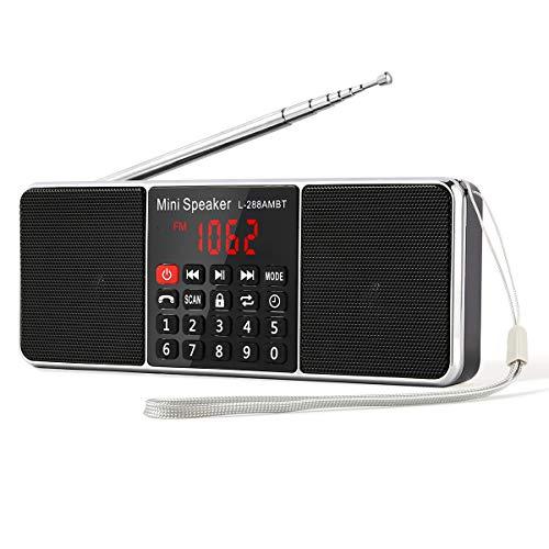 PRUNUS L-288 Tragbar AM(MW) UKW FM Bluetooth USB SD TF Radio MP3 mit Doppelmagnet Lautsprechern Stereo Sound AUX und Sleep Timer Funktion