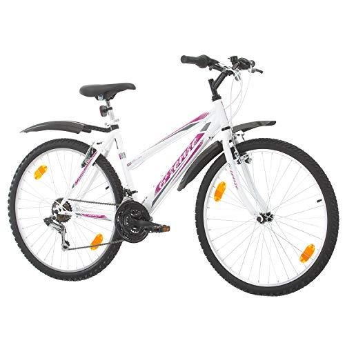 Multibrand, PROBIKE 6th Sense, 460mm, 26 Zoll, Mountainbike, 18 Gang, Schutzblech-Set, Für Damen (Rosa+Kotflügel)
