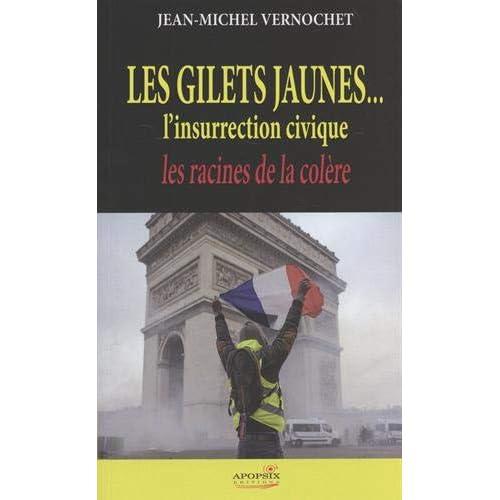 Jean-Michel Vernochet 'les Gilets Jaunes...l'Insurrection Civique'