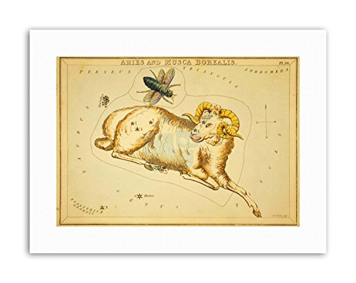 STAR MAP ARIES RAM BUG CONSTELLATION Painting Drawing Canvas art Prints