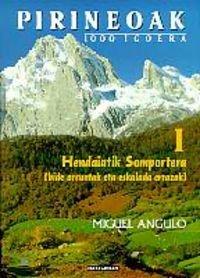 Pirineoak I - 1000 igoera. Hendaiatik Somportera (Mendia)