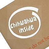 1x Chihuahua inside-window, Auto, Van, Aufkleber, Schild, selbstklebend, Hund, Haustier, auf, Board, Welpen, Rinde, Dach, Hundeleine, kleine, Little