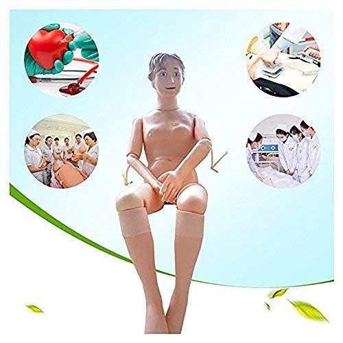 XHH Multifunktional Weiblich Krankenpflege Schulung Männchen Modell Für Krankenpflege Medical Schulung Lehre & Bildung Lieferungen, Leben Größe