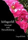 Schlaganfall: Schicksal und Herausforderung - Irmgard Elsholz