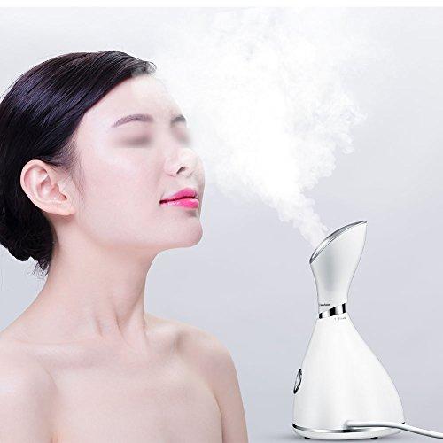 Nano Dampfgarer, Gesichtsreinigungsgerät, Gesichtspflege für Luftbefeuchter, Dampfreiniger Sauna, Facial, für die Reinigung in der Tiefe, Schwarz