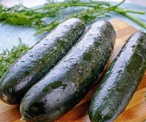 Bobby-Seeds BIO Gurkensamen Marketmore 76 Freilandgurke Portion
