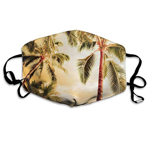 Daawqee Staubschutzmasken, Anti Dust Pollution Mask Palm Tree Print Reusable Washable Earloop Face Mouth Mask Men Women ()