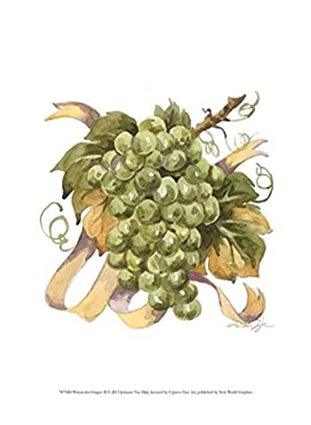 Jerianne Van Dijk – Watercolor Grapes II Fine Art Print