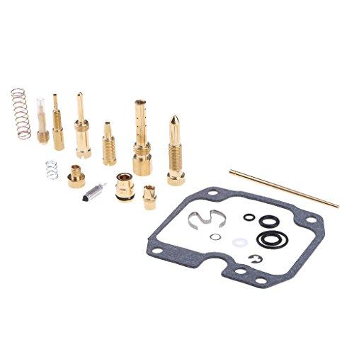 Baoblaze Vergaser Reparatur-Satz Dichtung Vergaseranlagen Vergaserüberholungs Werkzeuge Für für Kawasaki Bayou 250 KLF250