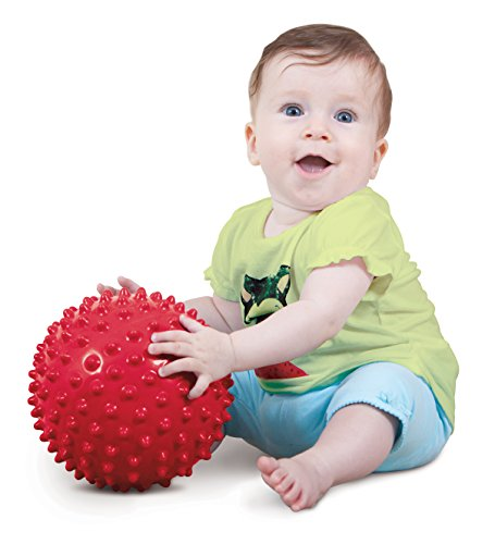Edushape 18cm Sensory Ball (Colours Vary), Essential baby toys, toys for every developmental stage, baby toys, must have baby toys, the best toys for babies, gift ideas for babies, Christmas baby gift ideas, gifts for babies