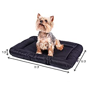 ANIMALY Hundebett wasserdicht und Kratzfest, Hundekissen geeignet für den Außeneinsatz, waschbare Anti-Rutsch Hundedecke, auch als z.B. Katzenbett geeignet, Hundematte schwarz M