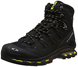 Salomon Outdoor Shoe Men Quest 4d Gtx Outdoor Shoes