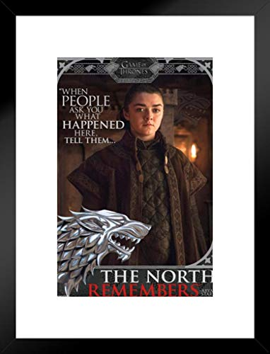 Pyramid America Game Thrones Arya The North merkt Sich TV Show 20x26 inches Matted Framed Poster