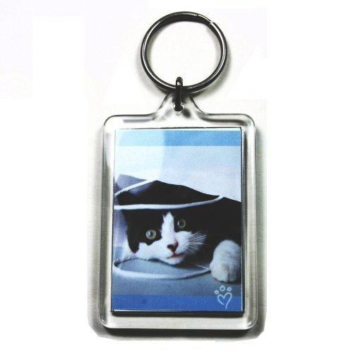 PC3721@ 92033 Schlüsselanhänger, für Foto mit 50 x 35 mm, transparent (5 Stücke)