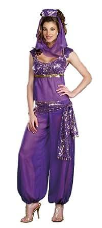 Purple Princess Jasmine Belly Dancer Genie Fancy Dress Costume Medium