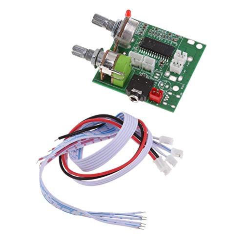 Generic Amplificateur de Carte 3D 5 V 20 W 2.1 1 Canal 3D Su Surround Digital al Stéréo CLAS Stéréo Classe Ital St Channel 3D d amp D
