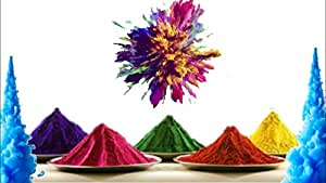S&S Quick to Clean and Wash Away Safe & Natural Non-Toxic Holi Powder Herbal Gulal Colors (Pack of 5 Colors; Blue, Green, Yellow, Pink, Red; Each Color: 100gms; Total : 500 GMS)