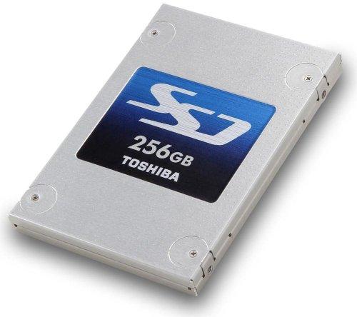 Toshiba THNSNH256GBST4PAGA interne-SSD 256GB (6,4 cm (2,5 Zoll), 19nm MLC NAND Flash, mSATA) grau