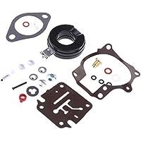 1 Satz Vergaser-Reparatursatz Umbausatz Für Außenbordmotoren Mikuni VM36
