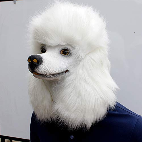 Lustige Pudel Kostüm - DIMOWANNGG Halloween Süße Pudel Haustier Hund Latex Maske Für Cosplay Kostüm Party/Halloween, Weihnachten Und Neujahr Kleidung Zubehör,Horror lustige Maske