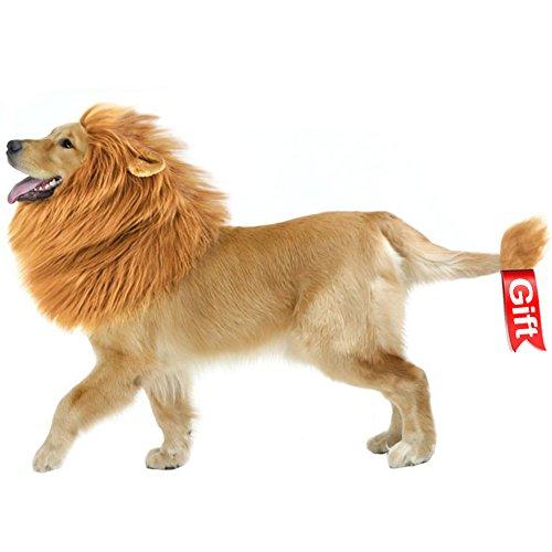 Hund Löwe Mähne, Haustier Löwenmähne Lion Hunde Perücke, Kleidung Schals Kostüm Hund für Festival Party (Braun) (Maus König Kostüm Kopf)