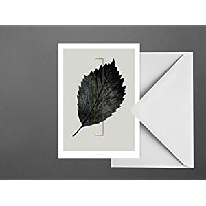 Postkarte / ABC Plants – I