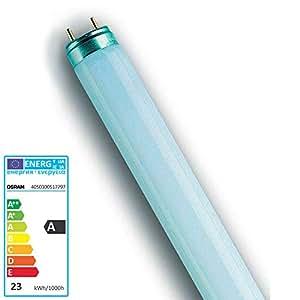 OSRAM Lot de 10 Lampes fluorescente LUMILUX T8 Culot G13 18 Watt (840) Cool White