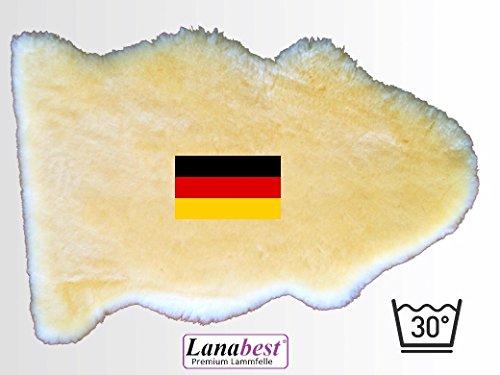 LANAMED LBMED7080D