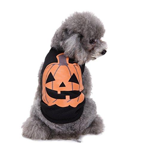 LvRao Chihuahua Yorkie Klein Hunde Katzen Shirts Weste | Kürbis | Halloween T Shirts Haustierkleidung Kostüm (Schwarz, XL) (Schwarze Halloween-kürbisse, Katze)