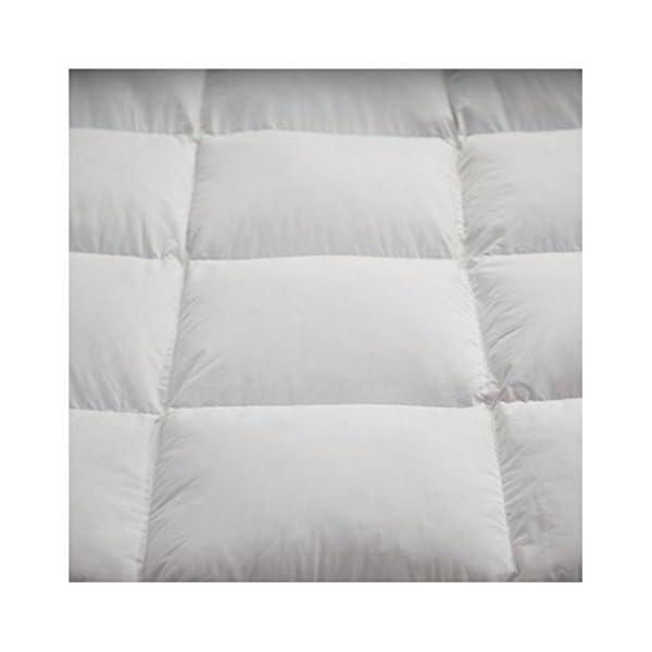 alpes blanc couette naturelle en plume 240x260 inspid co. Black Bedroom Furniture Sets. Home Design Ideas