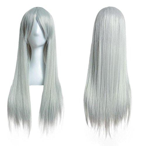 FNKDOR 80cm Perücke Lange Gerade Cosplay Party Kostüm Haarteile (Grau)