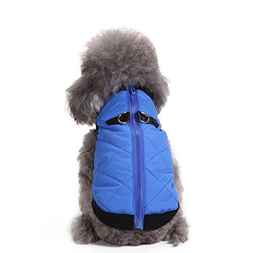 Veste matelassée rembourrée Aisuper pour chiens avec fermeture Éclair 4 couleurs chiens petits, moyens et grands.