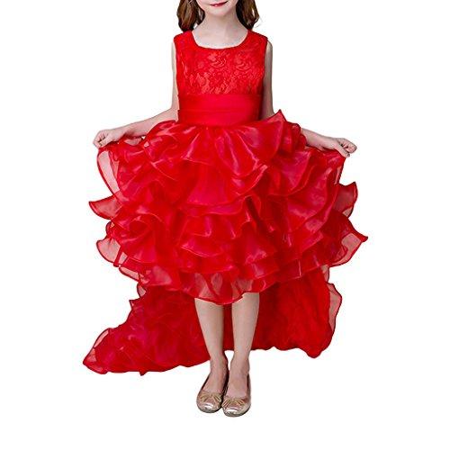 LA JINIRR Mädchen Sleeveless Red Party Tutu Kleid mit abnehmbarem Schwanz für Höhe (Herzen Tutu Königin Der)
