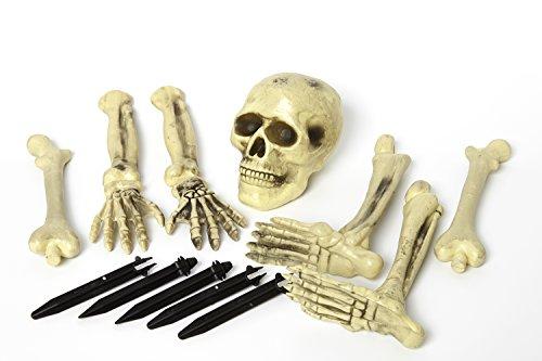 Motto B Kostüm Party Ideen (Heitmann Deco Halloween Grusel-Skelett -  Set mit Knochen und Totenkopf - Ideale Deko für Halloween oder)