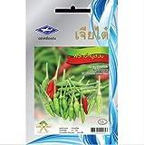 Portal Cool Seeds Package: 0.5 G 106 Seas ThaiPepper Chili Vegetal a Chia Tai andia Picante