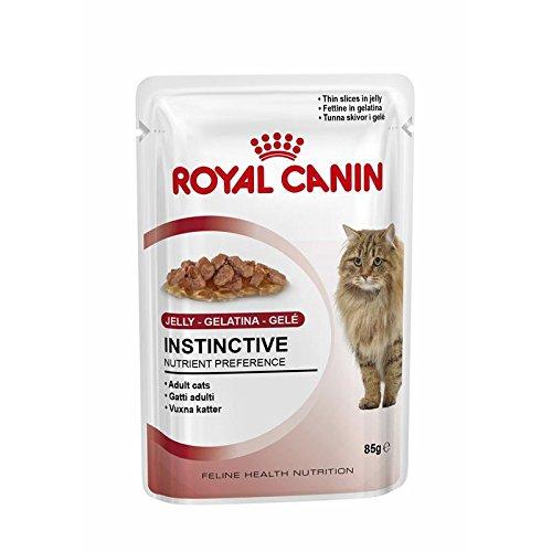 Royal Canin | Feline Health Nutrition Kitten Instinctive in Gelee | 12 - Canin Nassfutter Kitten Royal