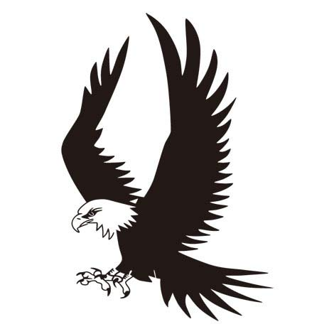 Eagle Flying Vinyl Etiqueta La Pared Eagle Soar Bird