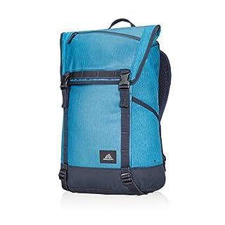 Samsonite Gregory Avenues Pierpont Hiking Backpack, 51 cm, 22 Litre, Highline Blue