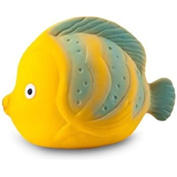 Caaocho ocean la the butterfly fish baby bath toy for Rubber fish toy