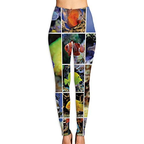 peitie104 Yoga-Hose Ocean Collage of Underwater Photos with Collect of Tropical Fishes Yoga Pants for Women Sport Tights Workout Running Leggings -