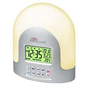 NEW LED SUNRISE WAKE UP LIGHT DIGITAL ALARM DESK CLOCK NATURE NATURAL SOUNDS by OnlineDiscountStore