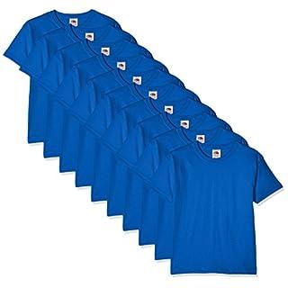 Fruit of the Loom Boy's Kids 10 Pack T-Shirt Regular Fit Plain Crew Neck Short Sleeve 10 T - Shirt, Blue (Royal Blue), 5-6 Years (Manufacturer Size: 5-6)